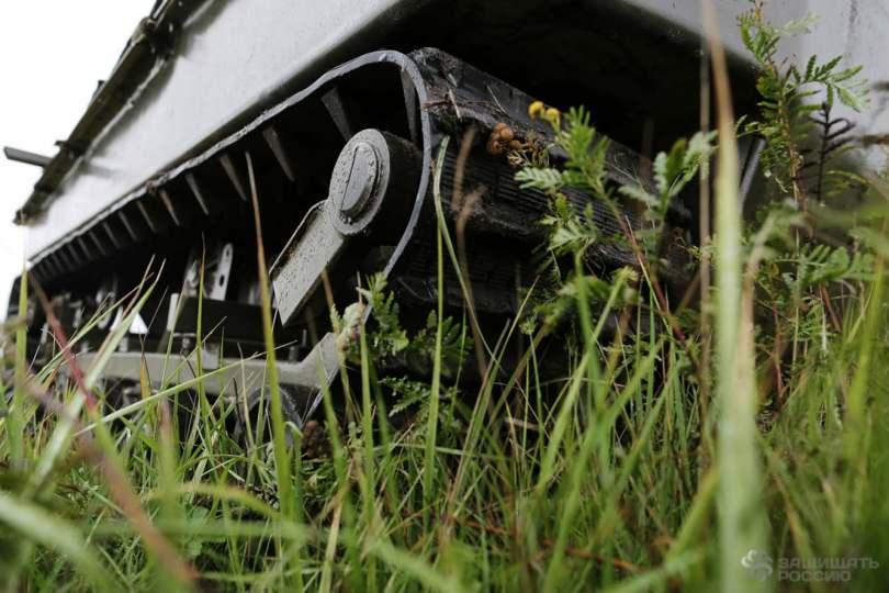 Tank-Grass